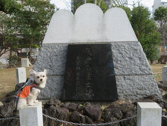 7F05 富士塚 0101