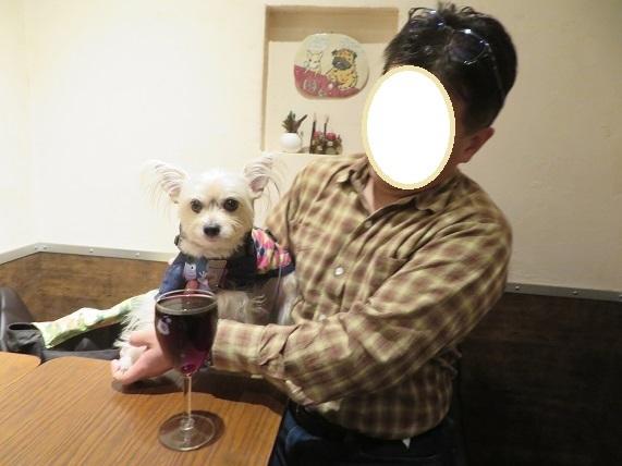 2A02S ワイン 1225