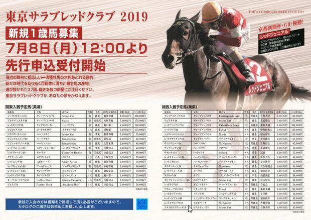 東京TC2019募集馬②