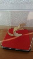 竹細工ネズミ