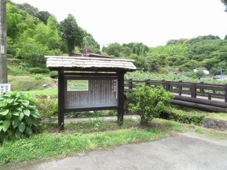 男の子焼・ウマノスズクサ・川下り 2019-06-08 063