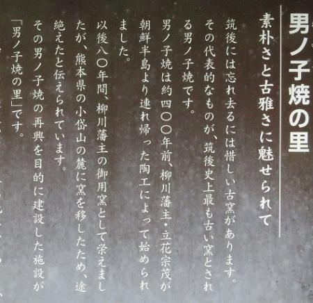 男の子焼・ウマノスズクサ・川下り 2019-06-08 064
