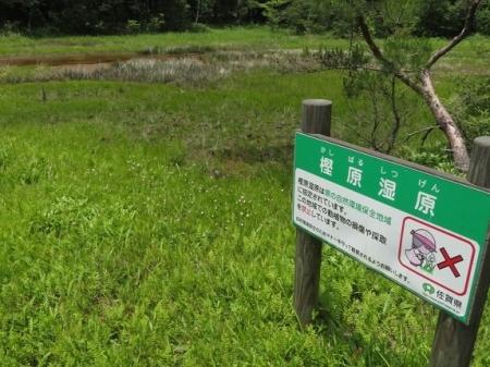 下田渡しと樫原湿原 2019-06-05 041