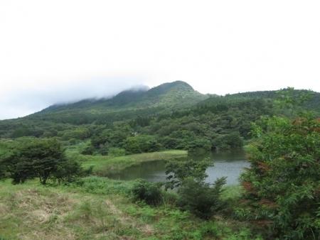 狐 八幡岳 2019-07-30 019