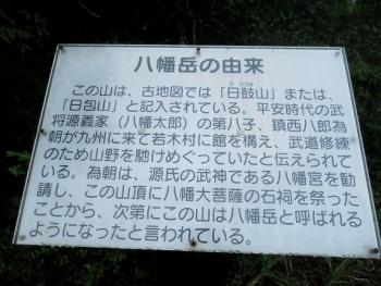 狐 八幡岳 2019-07-30 084