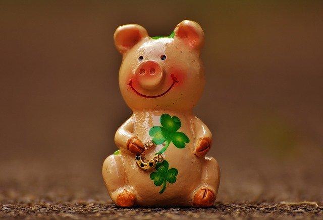 lucky-pig-1690950_640.jpg