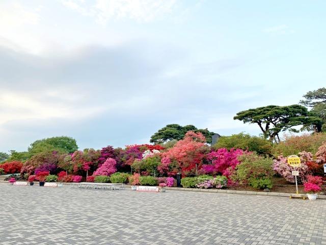 040 つつじが丘公園 (2)
