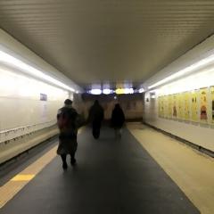 130 遠いぞ!!湘南新宿ライン (4)