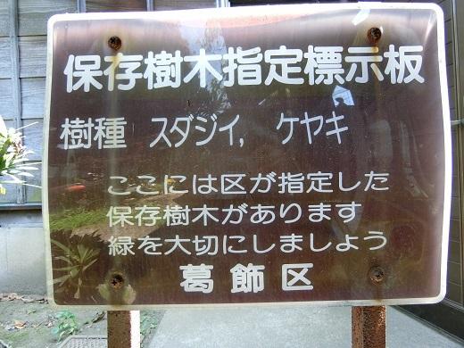 お花茶屋保存樹木