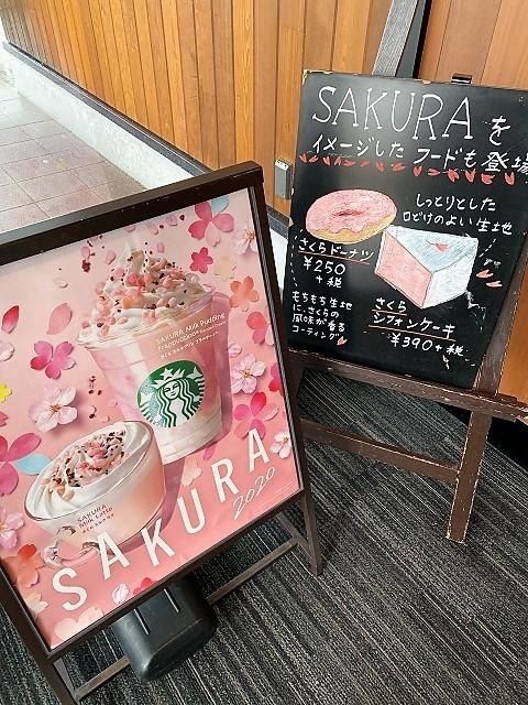 スターバックスコーヒージャパン 酒田みずほ店 さくらミルクプリンフラペチーノ2