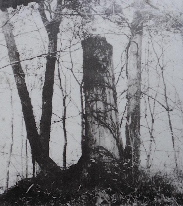 兜塚(勝淵神社)