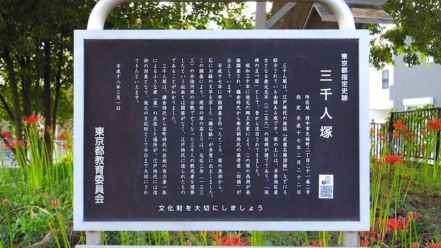 「三千人塚(石仏塚)」ー東京都指定史跡ー4
