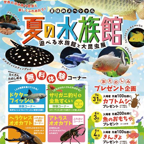 ヤマトヤシキの催し「夏の水族館」でわが子と遊ぶ♪①