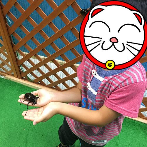 ヤマトヤシキの催し「夏の水族館」でわが子と遊ぶ♪⑥