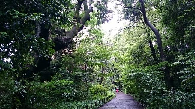 東京美術館めぐり~ちょっと寄り道・自然を楽しむ