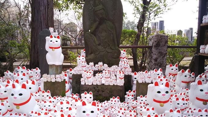 20200122豪徳寺招き猫