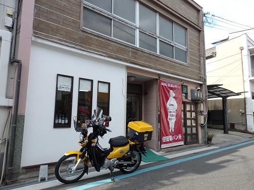 P1130130.jpg
