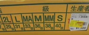 庄内柿1箱1500円