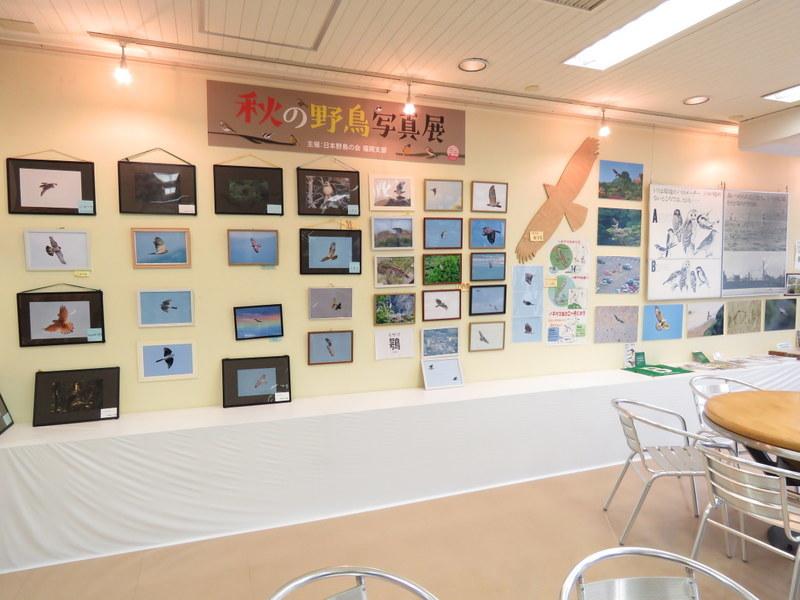 秋の写真展02