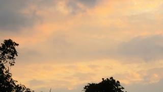 191125002 11_25の早朝の東の空