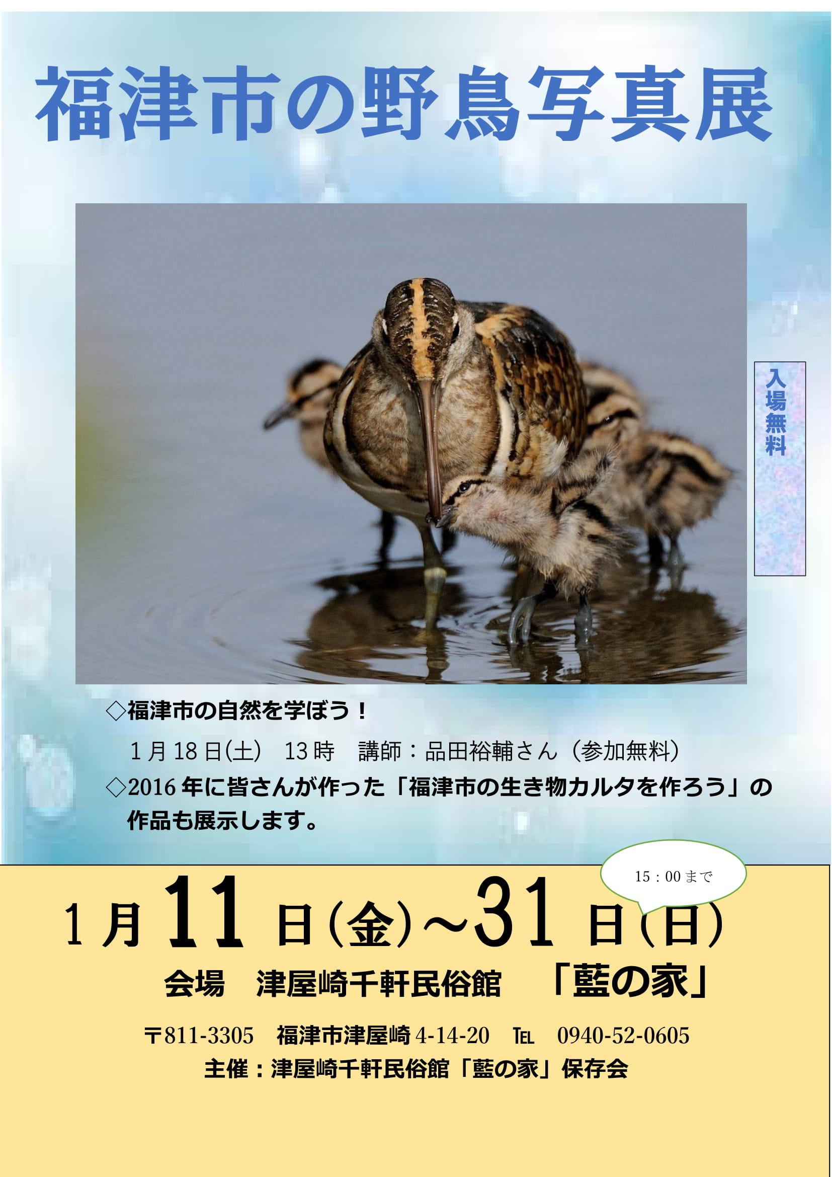 福津市の野鳥写真展2-1