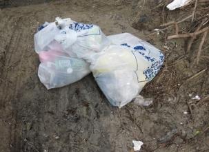 8 回収したゴミ