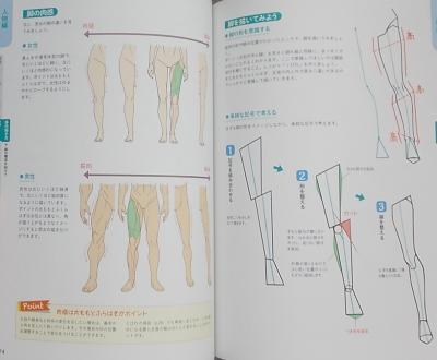 イラスト解体新書 (6)