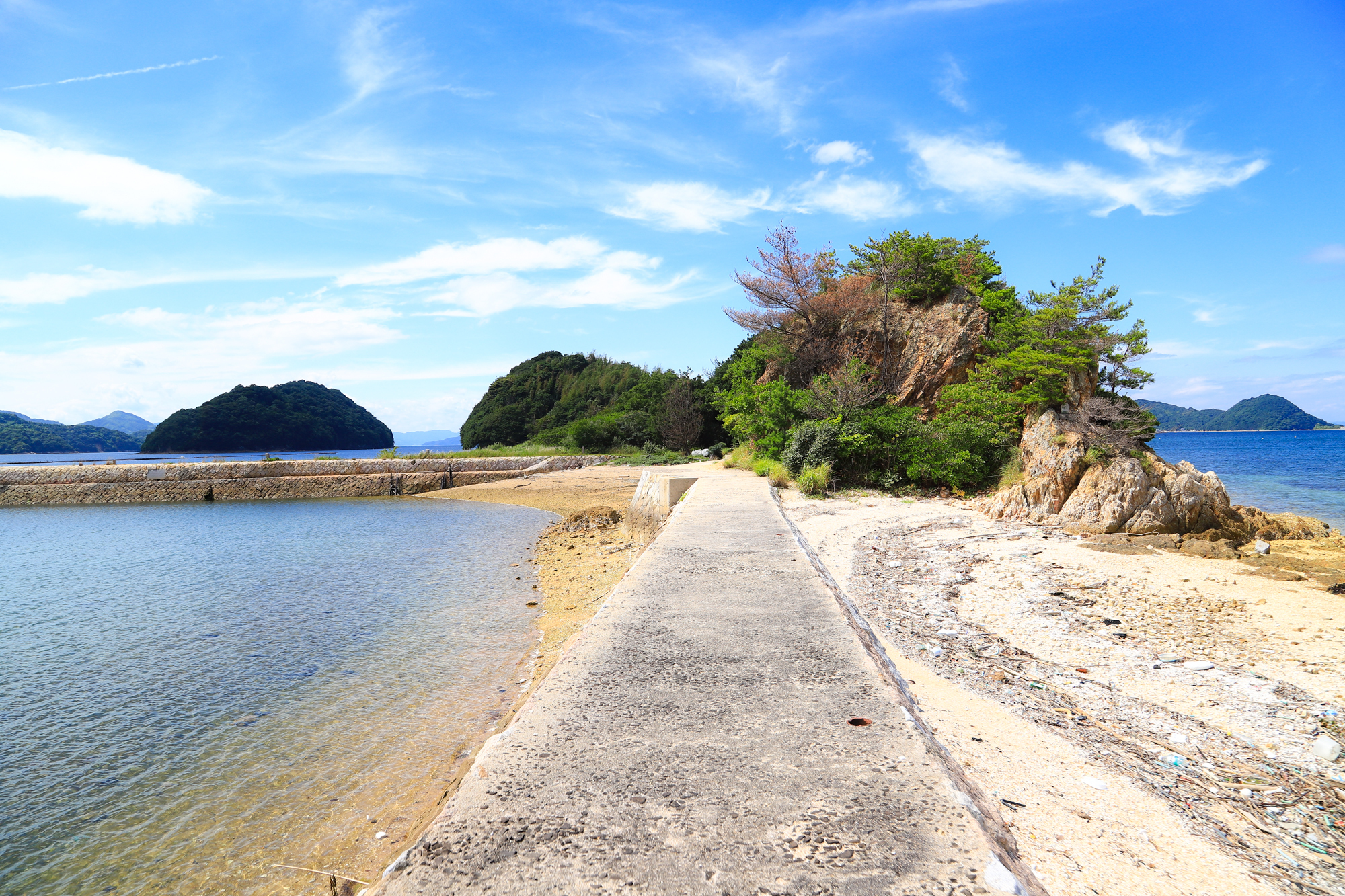 ooshima-5.jpg