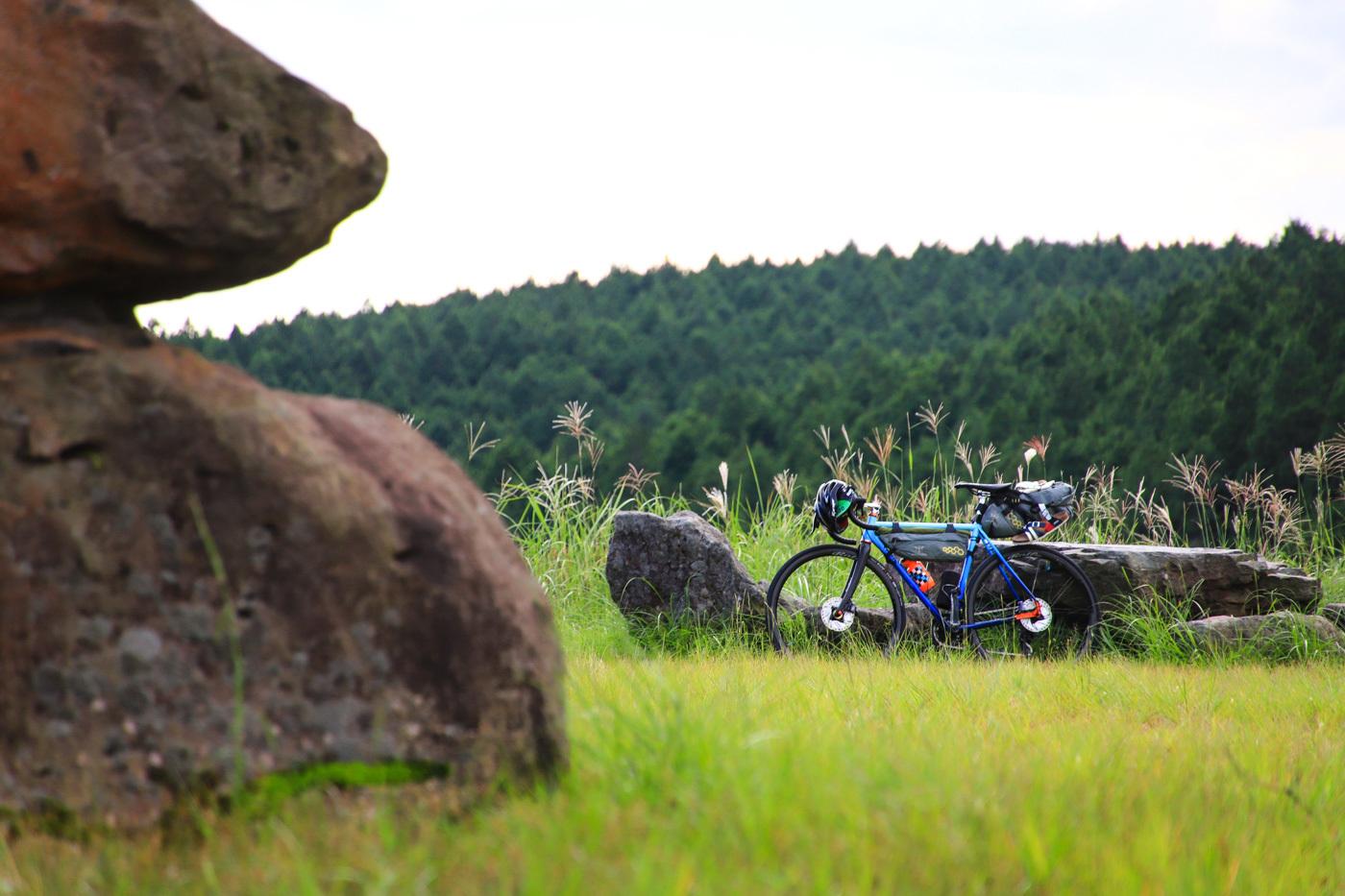 ridecampink-18.jpg