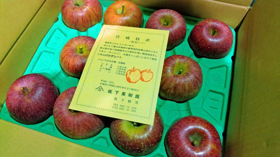 贈り物-りんご-1