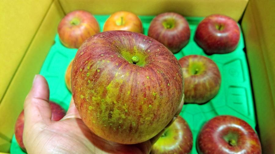 贈り物-りんご-3