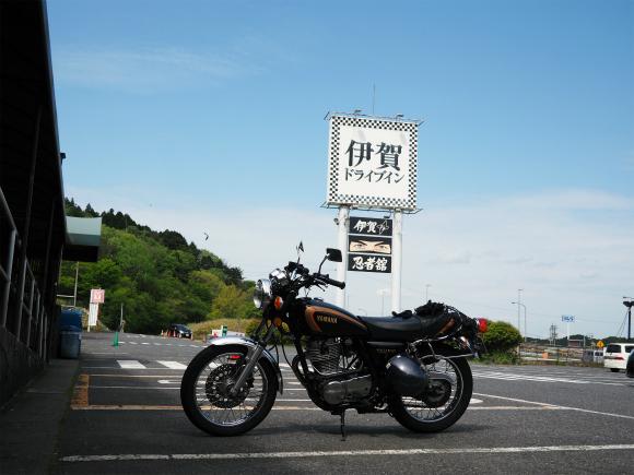 P5060404.jpg