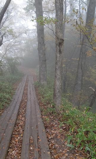 霧降の滝遊歩道1