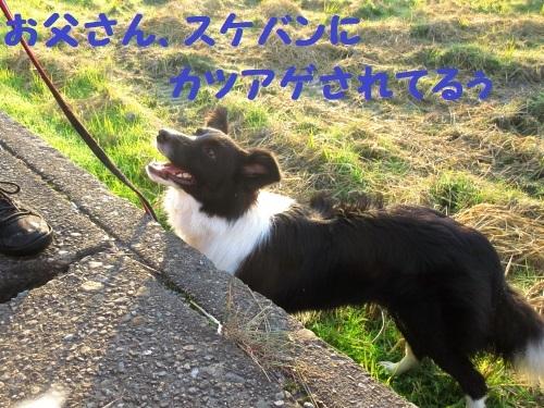 IMG_191224-6.jpg