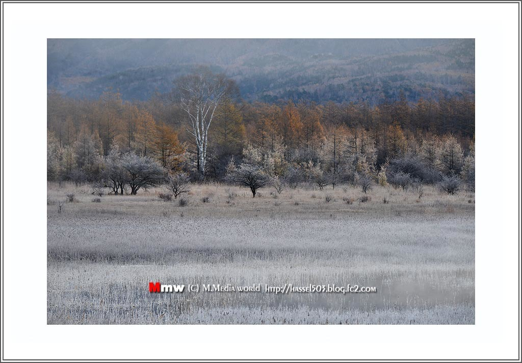 fc2_19_11_21.jpg