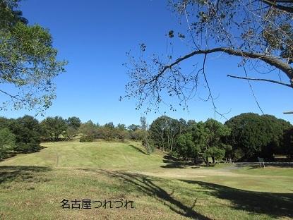 台風一過の緑地公園