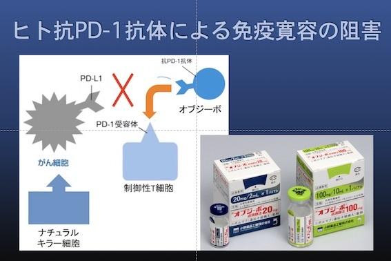 免疫療法004