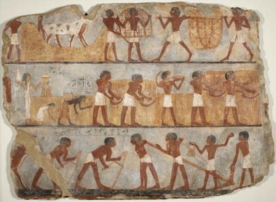 ウンスーの墳墓の壁画 農作業場面 写真