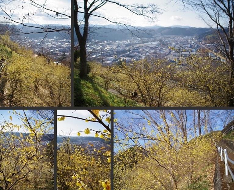 IMGP6872-horz-vert.jpg