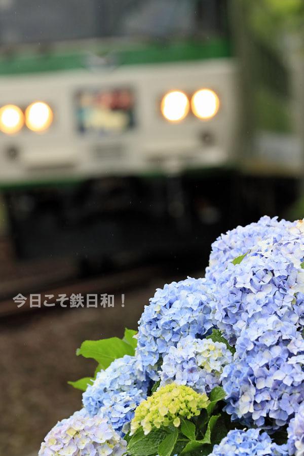 _MG12148.jpg