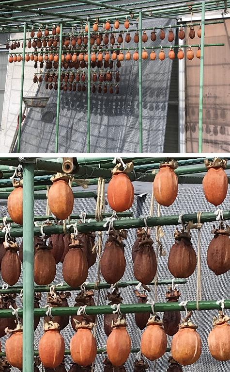 20191118干し柿