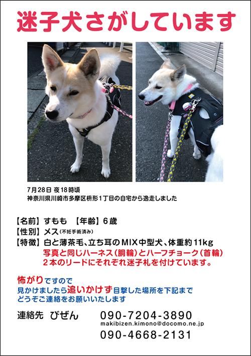 web_sumomo2.jpg
