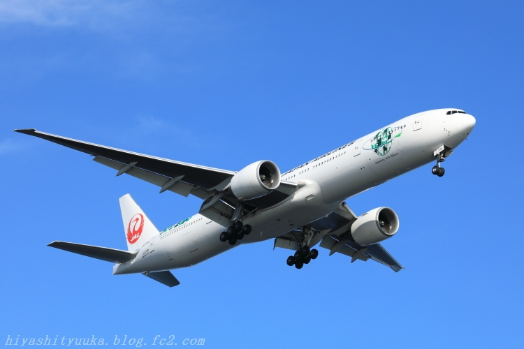 5Z2A7841 JAL エコジェット・ネイチャーSN
