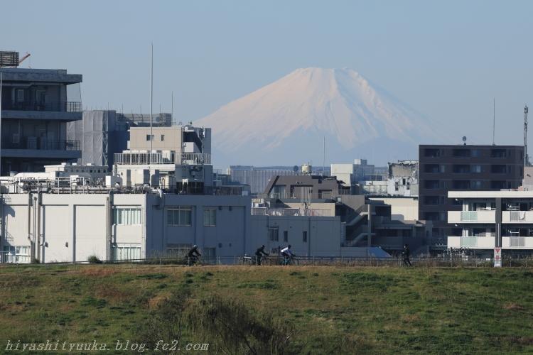5Z2A8186 富士山SN