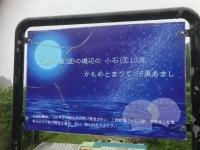 IMG_8887g.jpg