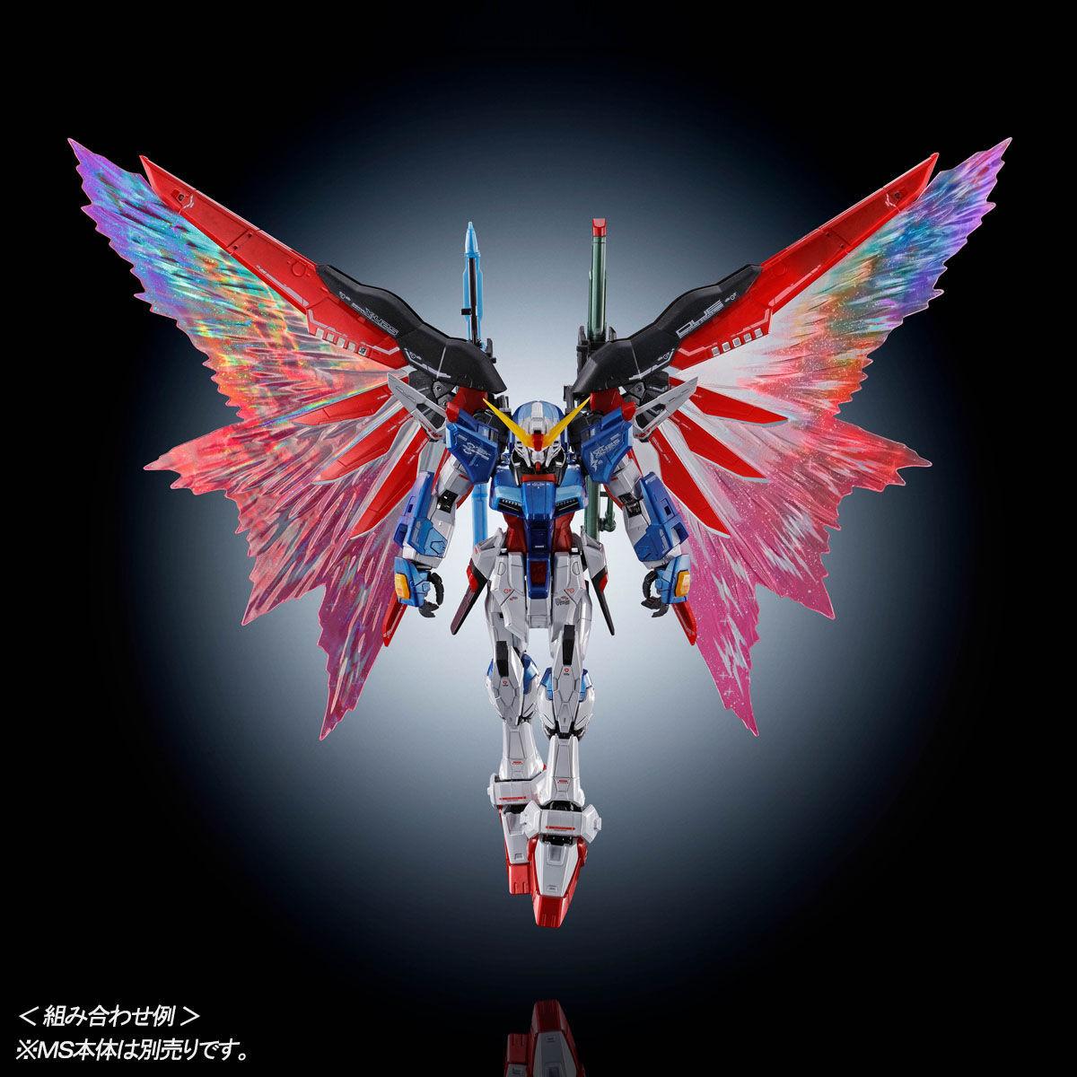 "RG デスティニーガンダム用 拡張エフェクトユニット""光の翼""09"