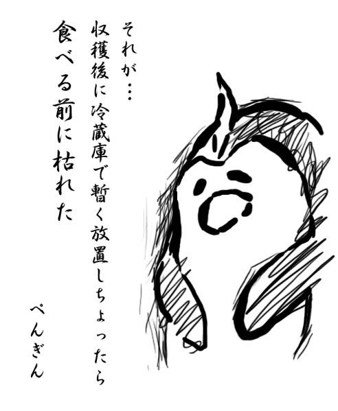 0717hakushures_pen5.jpg