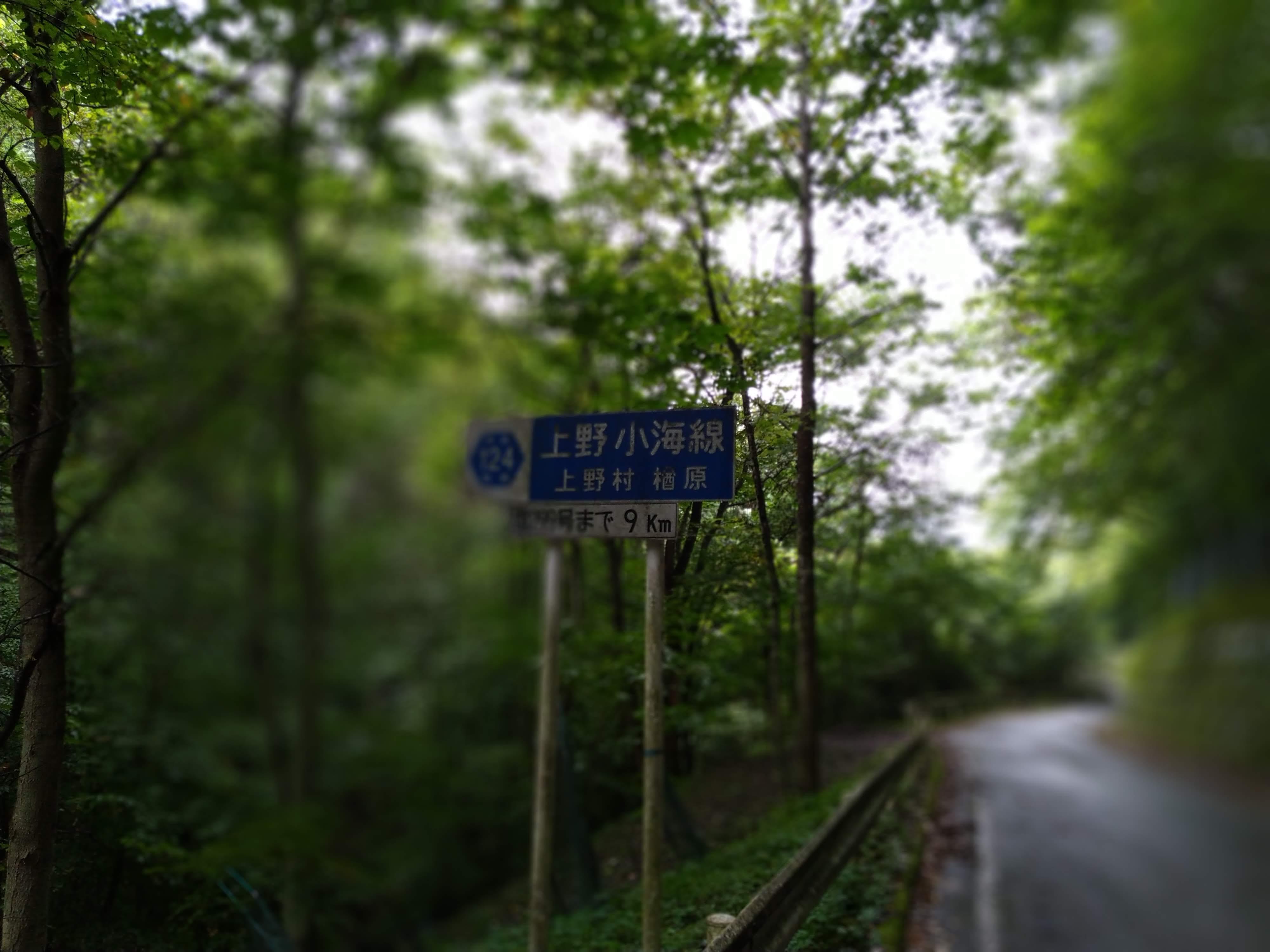 ぶどう峠1