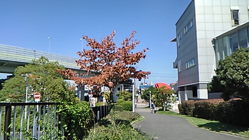 KIMG1283.jpg