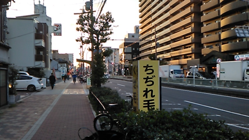 KIMG2248.jpg